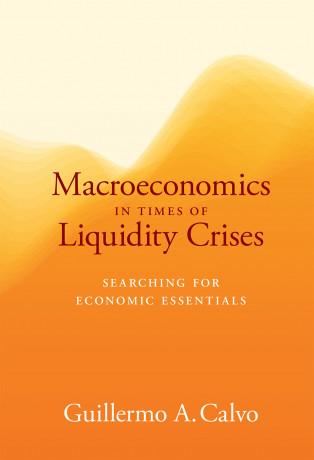 Macroeconomics in Times of Liquidity Crises