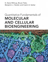 Quantitative Fundamentals of Molecular and Cellular Bioengineering
